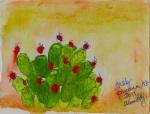 AZ cactus 2. For Grandpa and Mary Russ.